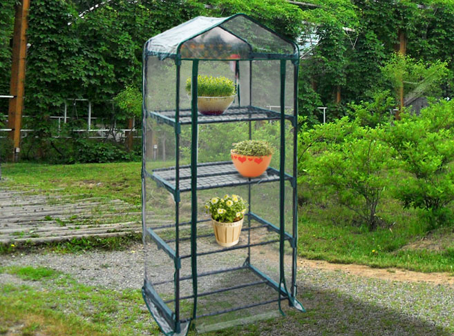 Portable Indoor Greenhouse : Tier mini portable greenhouse green house w shelves