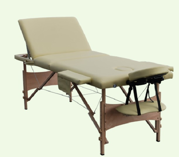 Healthline portable beauty massage table couch bed 3 for Mobile beauty therapist table